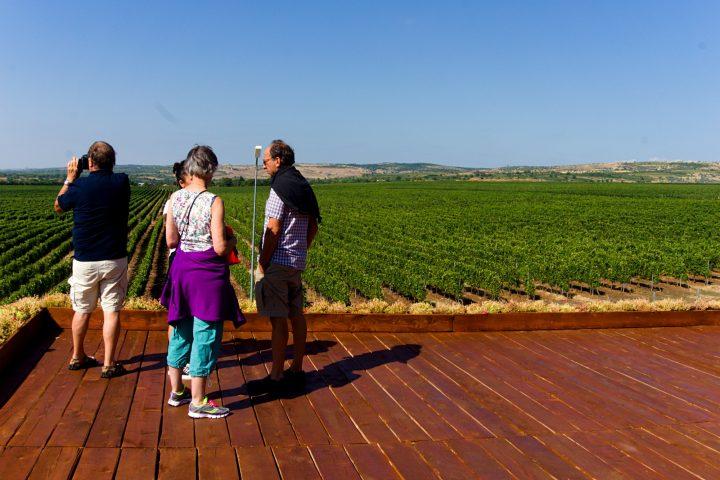Dealu Mare wine tour
